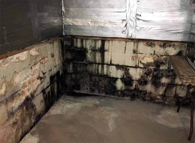 И несмотря на то, что сам материал блоков не является привлекательным для грибка, при наличии в порах воды плюс при комфортной температуре плесень всё-таки ухитряется здесь прижиться