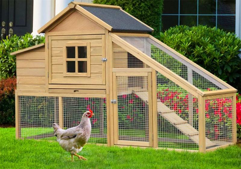 Если вы содержите животных в чистоте, они своим шумом и запахом не мешают соседям, то и конфликта не будет